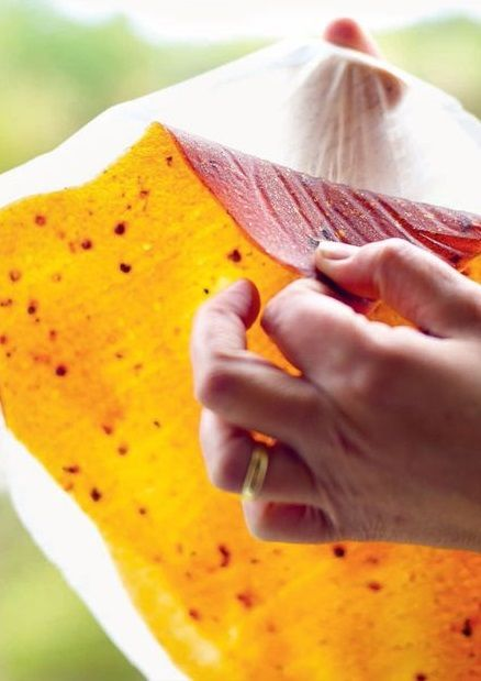 PLUM & SICHUAN PEPPERCORN FRUIT LEATHER [project inspiration, image only]