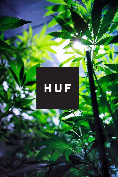 Diamond Supply Co Wallpaper Iphone 80 Best Huf Images On Pinterest Background Images Huf