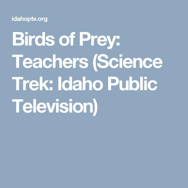 Birds of Prey: Teachers (Science Trek: Idaho Public Television)