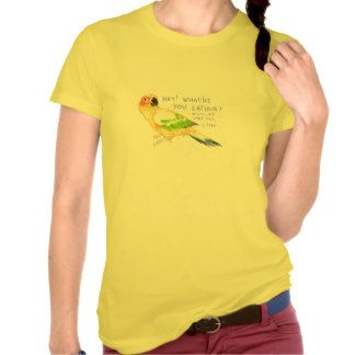 Sun Conure: What're You Eating? -the question on every sun's mind