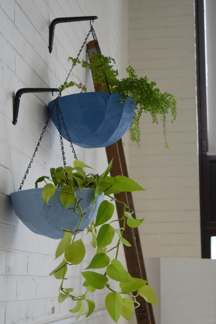 Add a burst of colour to your home with these fun hanging planters! Colourful hanging planters are a beautiful way to display your indoor plants.