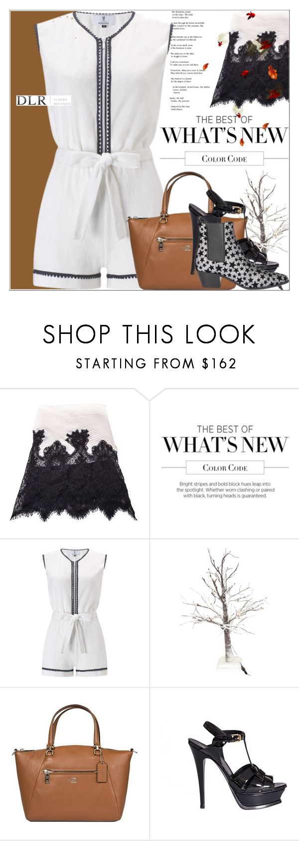 """""""DLRBOUTIQUE.COM"""" by mirachu-1 on Polyvore featuring Valentino, Laura Manara, Coach and Yves Saint Laurent"""