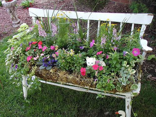 Love this bench and old chairs with flowers planted in them.