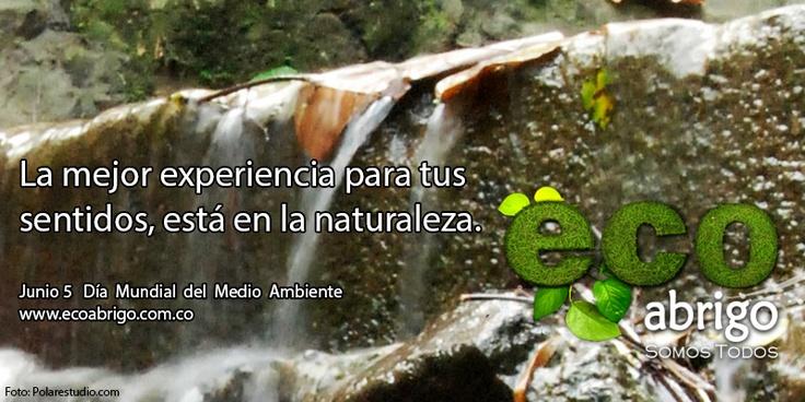 La mejor experiencia para tus sentidos, está en la naturaleza.  5 de Junio, Día Mundial del Medio Ambiente.  http://ecoabrigo.com.co