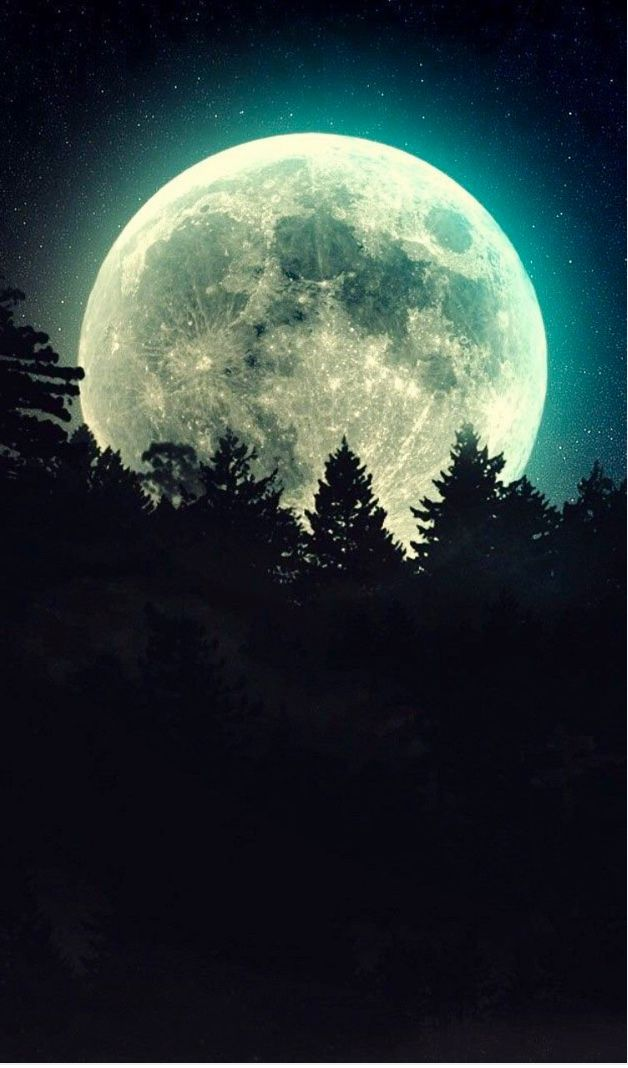 Pin By Bri Lit 101 On The Moon Magical Forest Beautiful Locations Moonlight