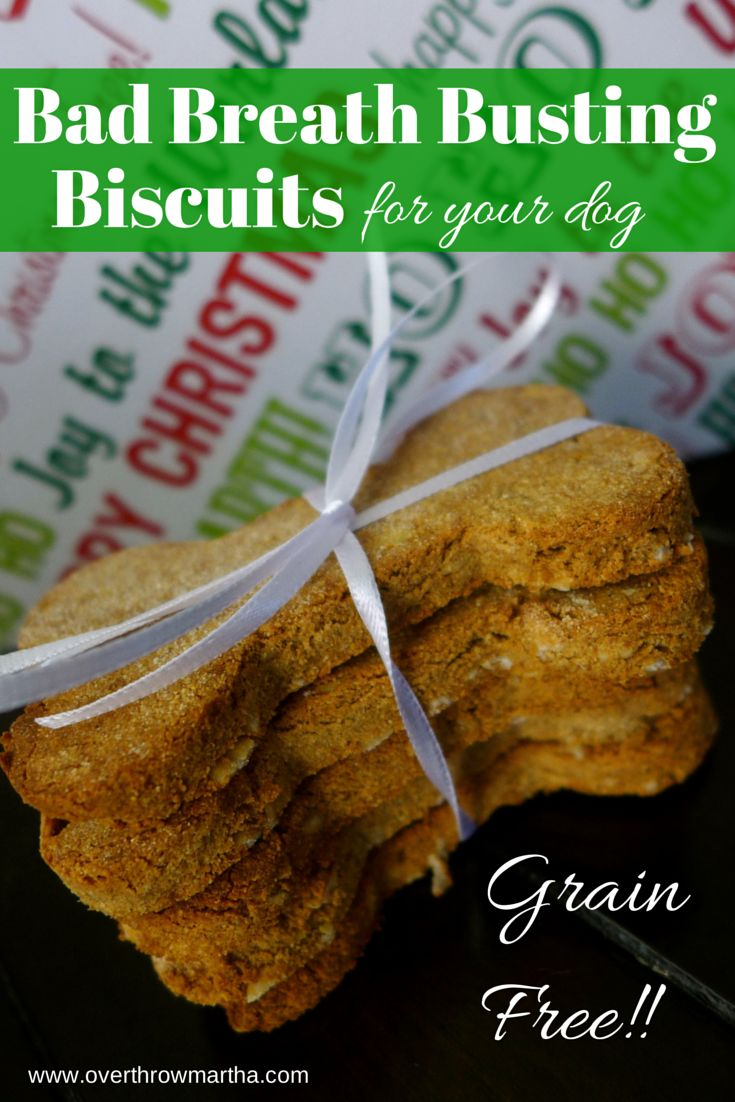 Best Dog Biscuits For Bad Breath