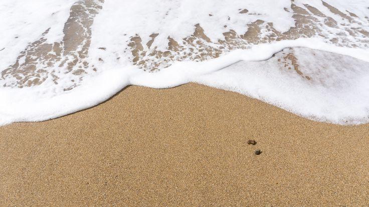 Whitewash ocean at Golden Cap, Dorset, England
