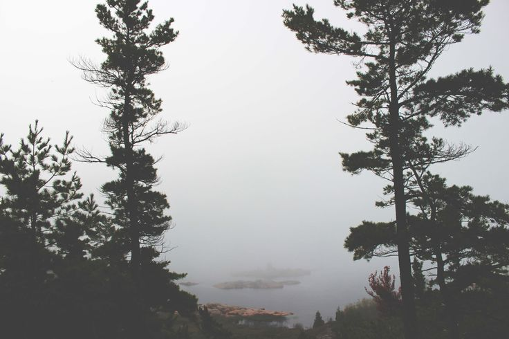 This was taken at the Chikanishing Trail in Canada's Killarney Provincial park