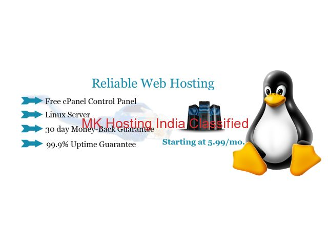 NGO-Free wordpress website with Web-Hosting and Domain-Name-Registration #MK_#Hosting_#India Daman and Diu - MK Hosting Classified