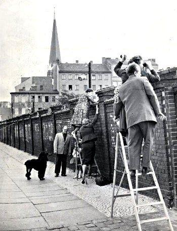 Blick über die Mauer des Sophienfriedhofs nach Ost-Berlin,1963