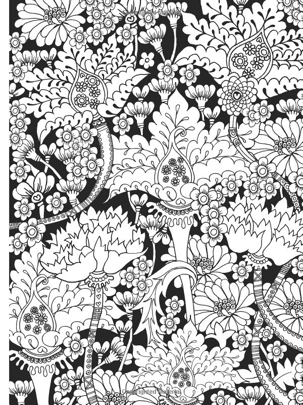 Creative Colouring Patterns Of Nature : Dover coloring on publications dovers