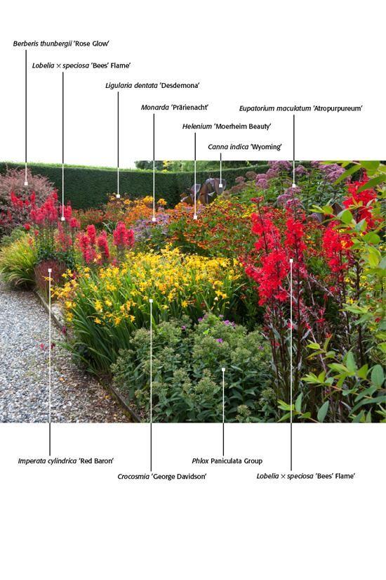 Les 32 meilleures images du tableau mixed border sur for Jardin anglais mixed border