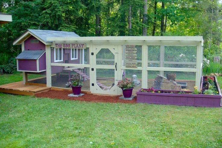 Colorful Chicken Coops | ... the chicken coop can make it look a lot more homey and presentable