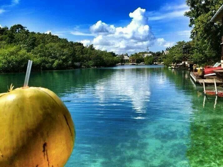 635 Best Jamaica Beautiful Jamaica Images On Pinterest Cooking Food Jamaican Dishes And