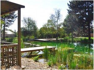 Biotop ökosiedlung Gal Making A Natural Swimming Pool