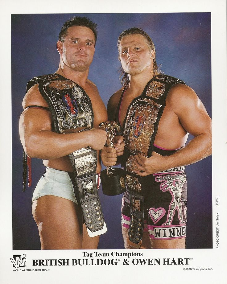 70 Best Images About Davey Boy Smith On Pinterest