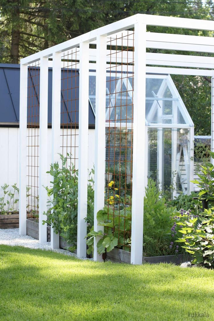 use the wire frame for climbers. (have same steel wire veg garden - it's brilliant)