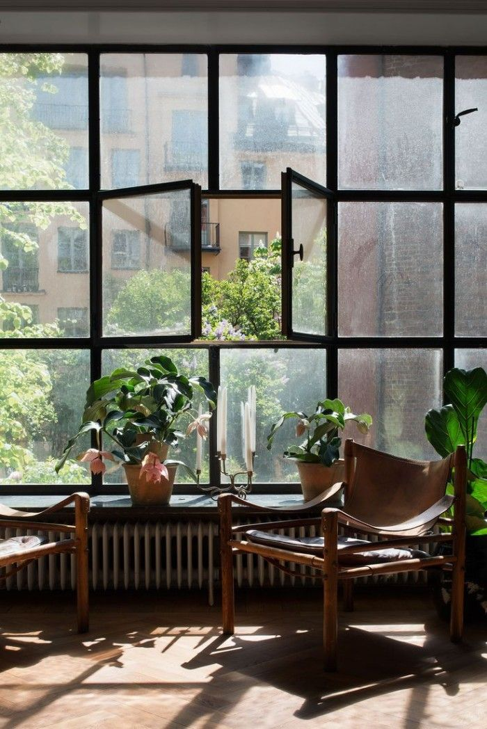 industrial windows kaare klint safari chairs fig tree