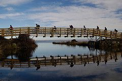 Little River Rail Trail - Great for families