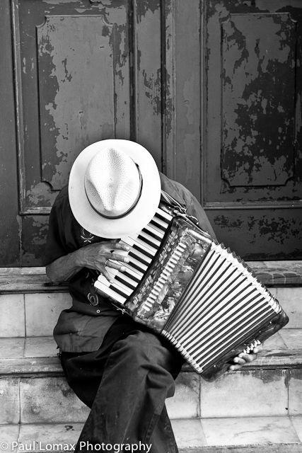 Musician - Google 検索