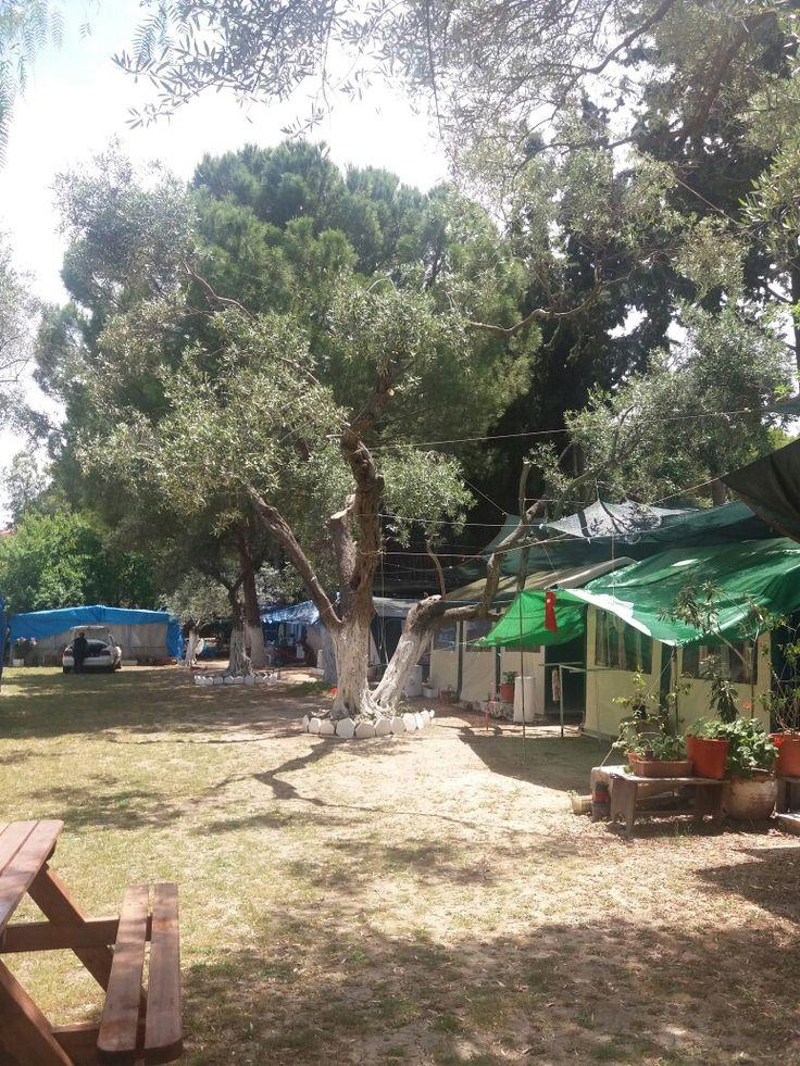 Karavan  kampı yat kamp kuşadası