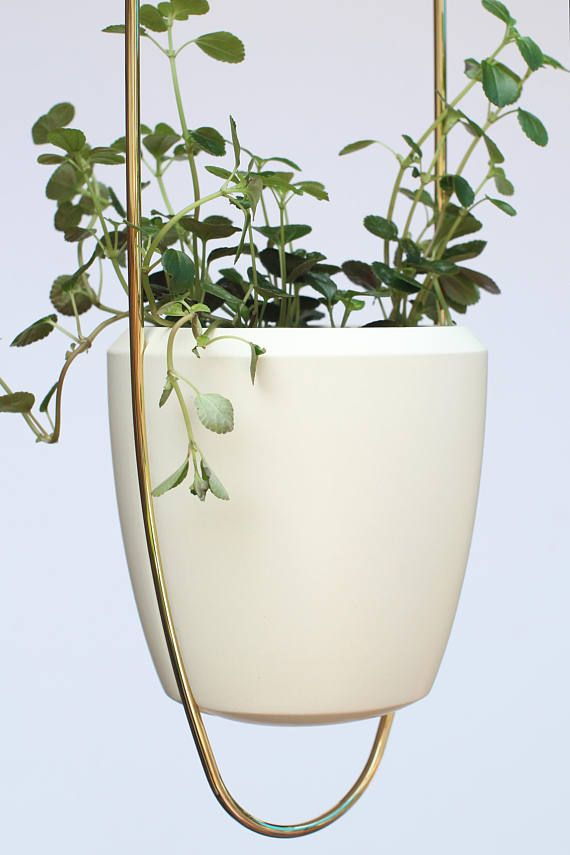 Modern Brass Wire Plant Hanger With Ceramic Pot 34 Long X 5 5 Wide Hand Bent From One Continuous Piece Of Heavy Gauge Brass Wire Looks Stylish In You Plantas