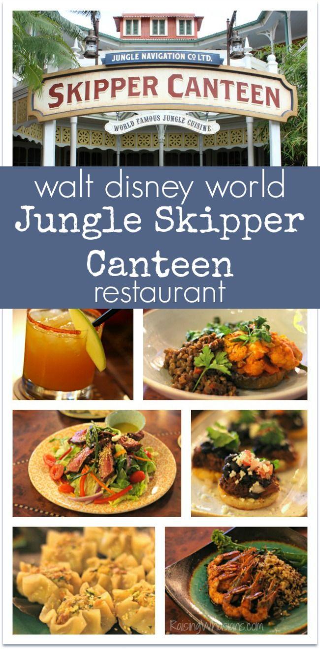 Best 25 Disney magic kingdom ideas on Pinterest  Magic kingdom