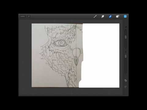 Drawing Straight Lines With Procreate : Best ipad procreate app tools images art