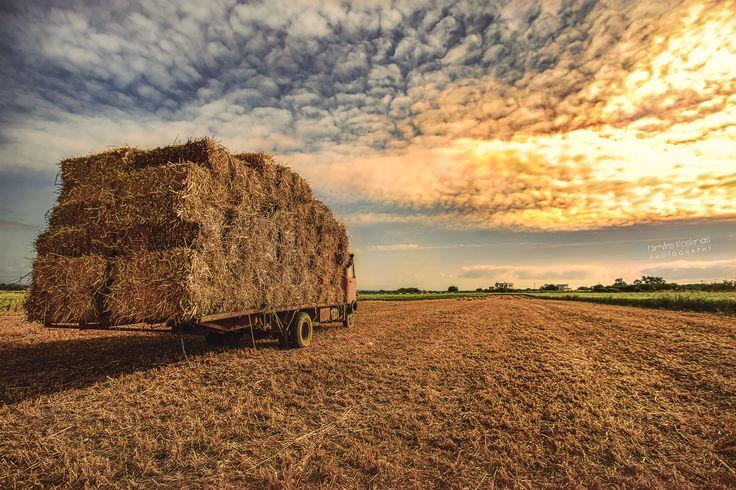 Photo harvest II by Dimitris Koskinas on 500px