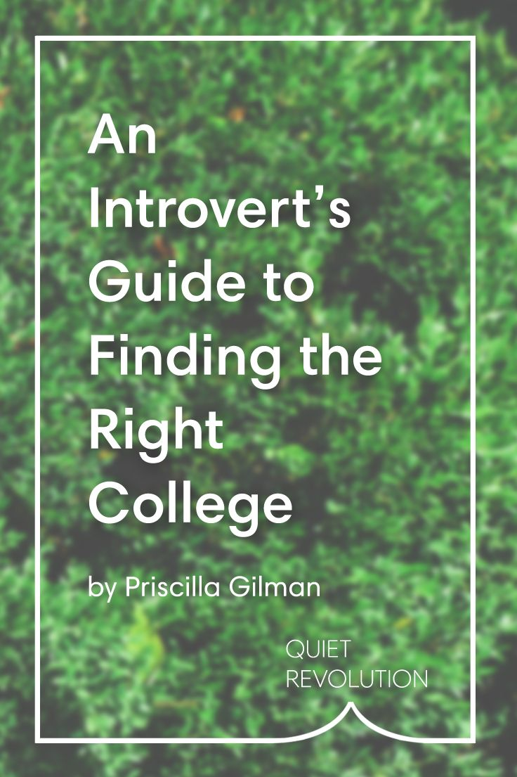 pulse introverts guide finding love