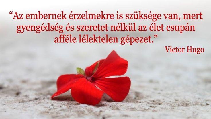 """""""Az embernek érzelmekre is szüksége van, mert szeretet nélkül az élet csupán afféle lélektelen gépezet."""" Viktor Hugo"""