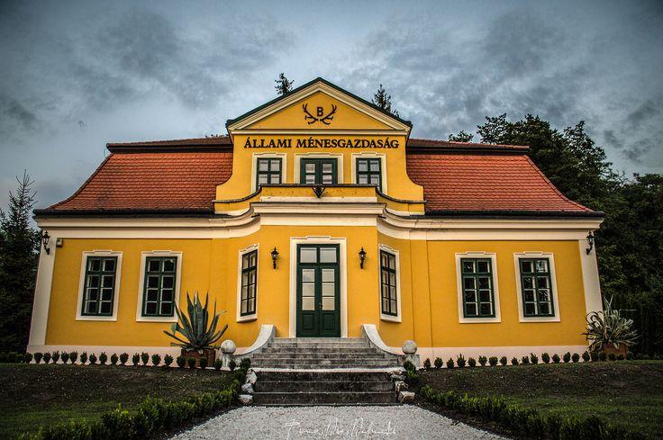Stud farm economy house Photo by ©Timea Mia Medveczki