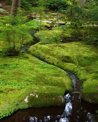 Metropolitan Gardens: Gardening in Cascadia: Bloedel Reserve: The Moss Garden