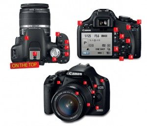 24 camera features every beginner photographer must memorize   Digital Camera World digitalcameraworld.com