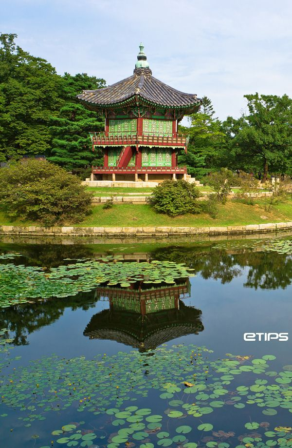 Gyeongbokgung pavilion in spring, Seoul, South Korea | 서울시 | by eTips Travel Apps