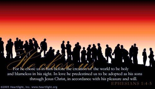Ephesians 1:4-5 KJV 4 According as he hath chosen us in him before the foundation of the world, that we should be holy and without blame before him in love: 5 Having predestinated us unto the adoption of children by Jesus Christ to himself, according to the good pleasure of his will,