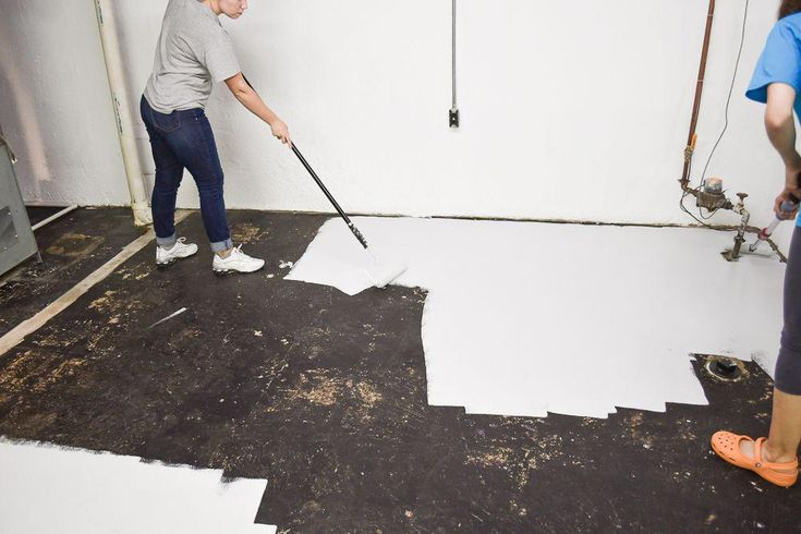 How to effectively get rid of mold in your basement