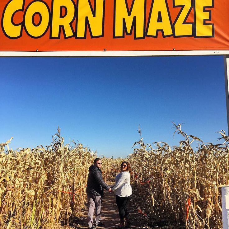 Corn Maze #fun #fall #activities #edmonton #alberta #canada #corn #maze #october #halloween #2015 #adventure #lovehim #mc #boyfriend #familia #love by saharavasiliki