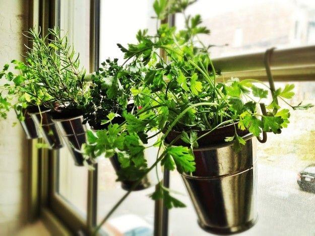 Bringe innen auf deiner Fensterbank eine Botaren-Duschvorhangstange an, damit dein Kräutergarten immer genug Licht bekommt. | 40 absolut geniale Ikea-Upgrades, die nur teuer aussehen