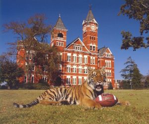 Auburn Tigers FootballAuburn Tigers Football, Auburn Football, Auburnwar Eagles, Auburn Universe, Things Auburn, Football Season, Wars Eagles, Auburn Families, Auburn National