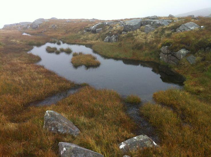 Misty Sliabh Sneachta, Donegal.