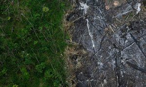 How safe does protected status keep the world's national parks?An area of the Amazon rainforest which has been slashed and burned next to a section of virgin forest in Nova Esperanca do Piria in Brazil.
