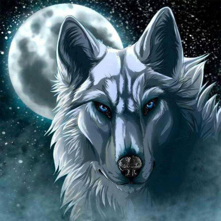915 best fantasy loups esprit indien images on pinterest - Anime wolf wallpaper ...