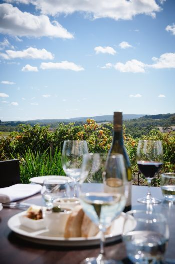 Winery lunch at Wills Domain