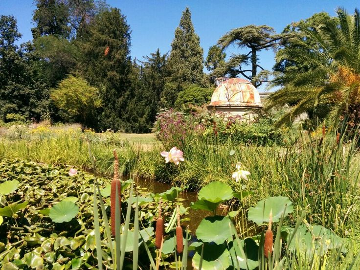 17 best images about visites de parcs et jardins du monde on pinterest gardens monaco and. Black Bedroom Furniture Sets. Home Design Ideas
