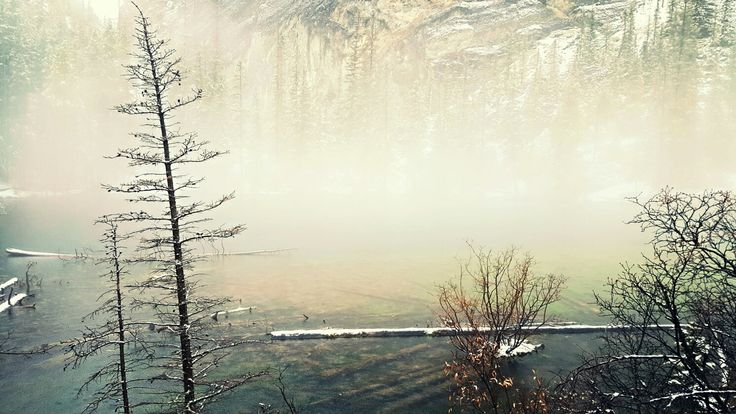 Grassi Lakes Hike  Canmore, AB  Oct 14/16  #hike #photography #nature #mountains #alberta #canada #fog #snow #beautiful