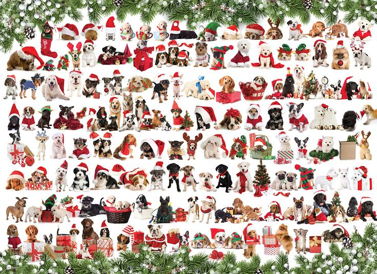 Holiday Dogs! 1000 pieces.  This cute collage of Christmas puppies is sure to delight dog lovers everywhere