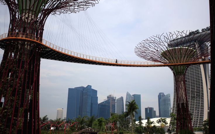 A man cross the OCBC Skyway linking 'Supertrees', ranging from 25-50 metres in height and serving as vertical gardens, in the nearly completed Gardens By The Bay next to Singapore's financial district