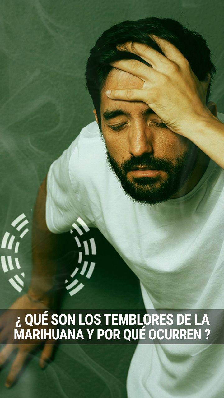 """¿Alguna vez has empezado a temblar de forma incontrolable después de fumar mucha hierba? No eres el único. Los """"temblores del cannabis"""" tienen varias causas, y lo más probable es que no tengas motivos para preocuparte"""