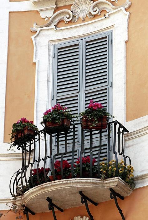 Europeen living-beautiful but little balcony-still has space for lots of flowers :) Love it!